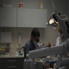 ברזובסקי סלווה רופא שיניים